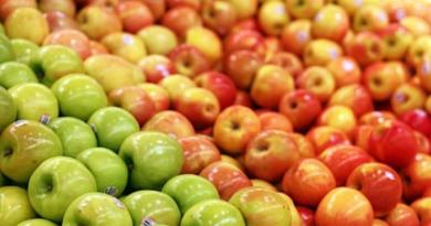 Äppelskörden i Spanien är i full gång och flera andra frukter skall snart skördas