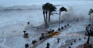 """Minst 12 döda hittills under stormen """"Gloria"""""""