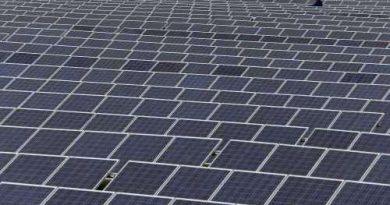Protester när inlandet förvandlas till solcellsparker